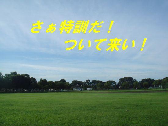 画像 225c.jpg